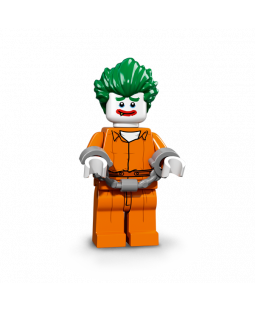 Arkham Asylum Joker - Batman Movie Series 1
