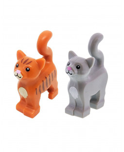Grey & Ginger Cats