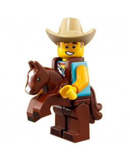 Cowboy Costume Guy - Series 18