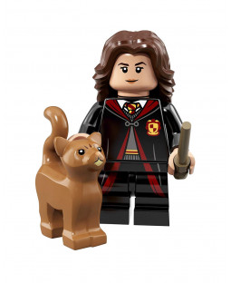 Hermione Granger - Harry Potter Series 1